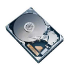 320Gb WD3200AAJB (ATA100, 7200rpm, 8Mb)